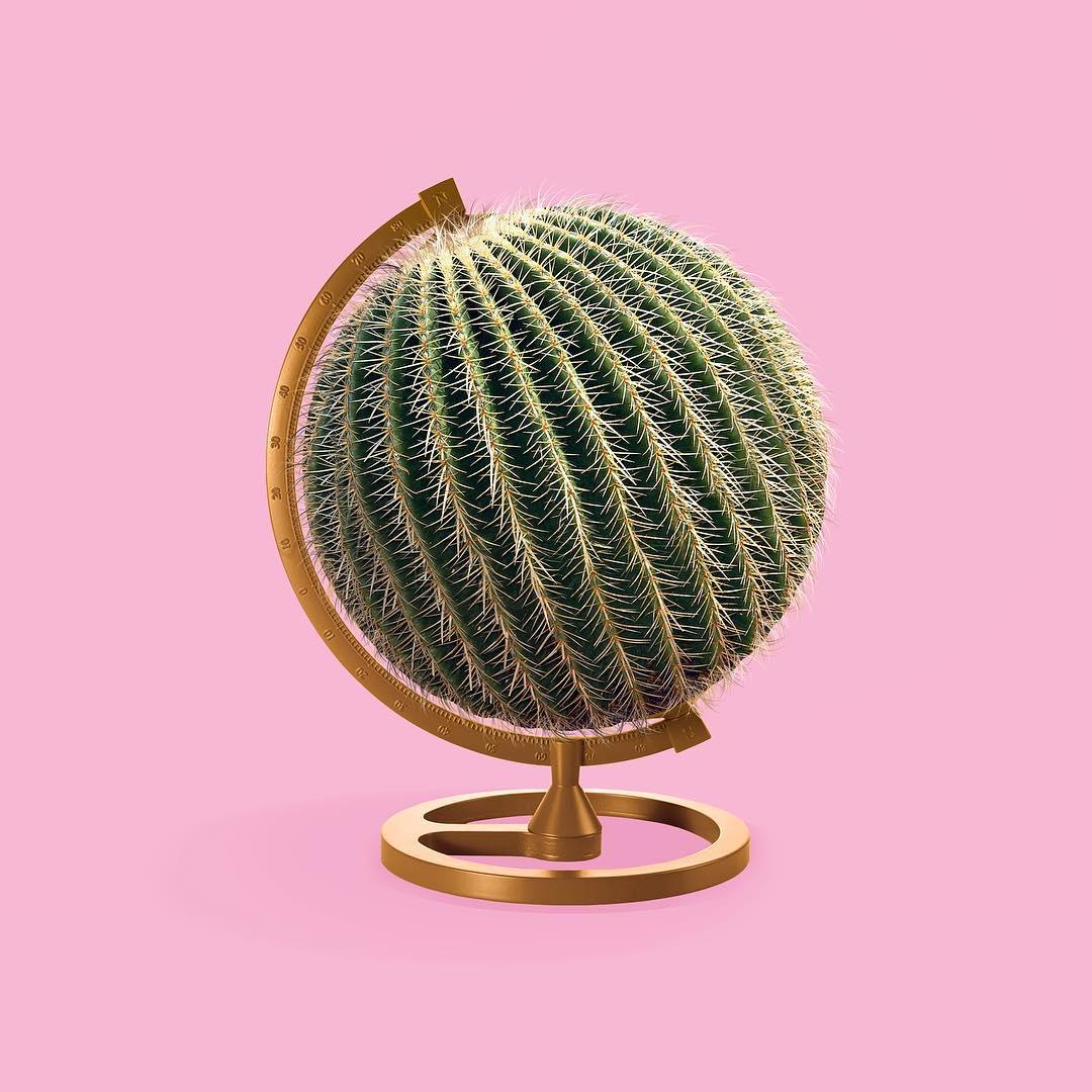 Kevin Killjoy cactus globe